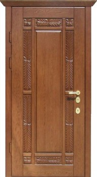 железные двери для дачи павловский пасад